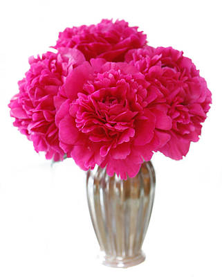 Photograph - Peony Bouquet by Marilyn Hunt