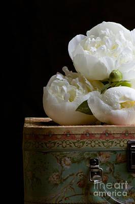 Peony Flowers On Old Hat Box Art Print by Edward Fielding