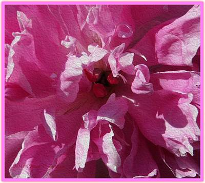 Peony In Pink Macro Art Print