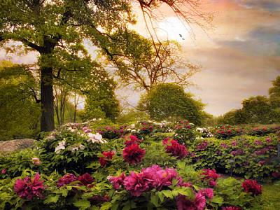 Garden Flowers Photograph - Peony Place by Jessica Jenney