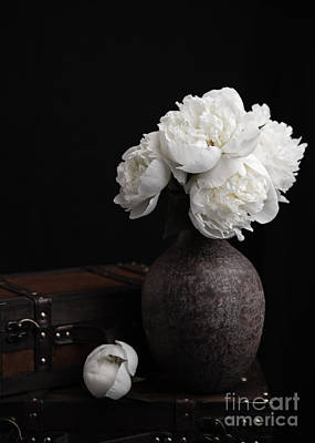 Antique Flowers Vase Wall Art - Photograph - Peony Still Life by Edward Fielding