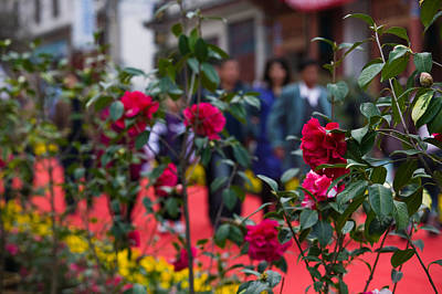 Dali Photograph - People At Spring Flower Festival, Old by Panoramic Images