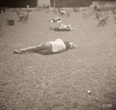 People Sleeping In The Park Print by Beverly Brown