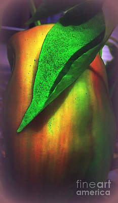 Photograph - Pepper Art by Renee Trenholm
