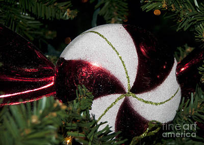 Photograph - Peppermint Ornament by Leslie Cruz