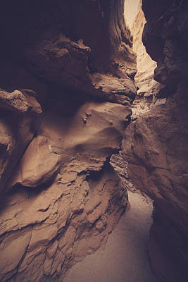 Anza Borrego Desert Photograph - Perception by Laurie Search
