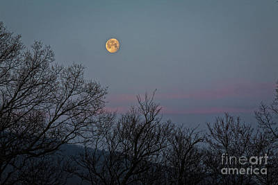 Photograph - Peregrien Full Moon by Ronald Lutz