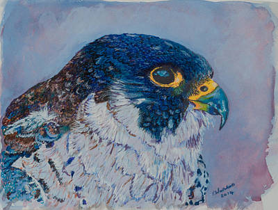 Peregrine Falcon Art Print by Tricia Winwood