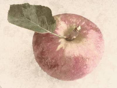 Perfect Apple Art Print by Photographic Arts And Design Studio