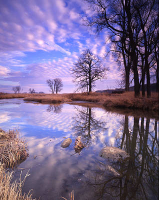 Perfect Clouds Art Print by Ray Mathis