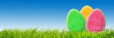 Background Photograph - Perfect Easter Background by Michal Bednarek