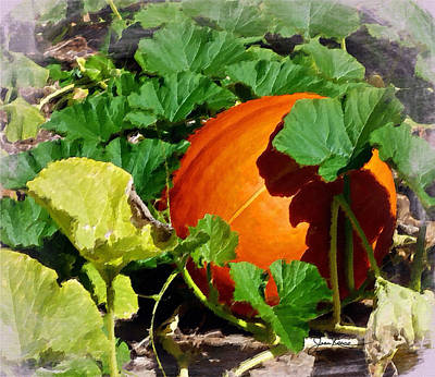 Digital Art - Perfect Pumpkin by Joan Reese