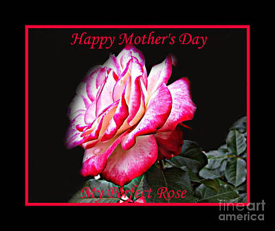 Photograph - Perfect Rose - Mother's Day Card by Shelia Kempf