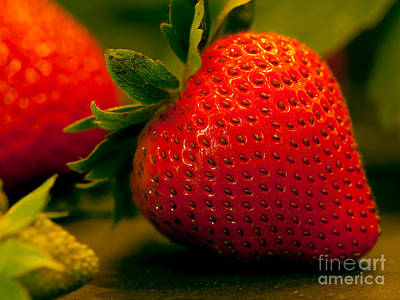 Strawberry Photograph - Perfect Strawberry by Patricia Bainter