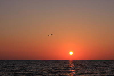 Photograph - Perfect Sunset by Shari Jardina