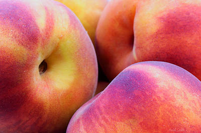 Peaches Photograph - Perfectly Peachy by Heidi Smith