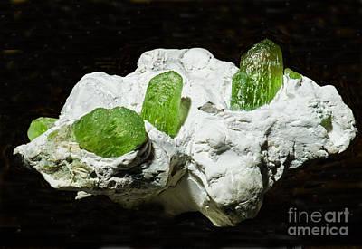 Photograph - Peridot Crystals by Millard H. Sharp