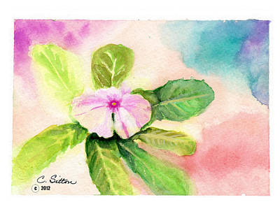 Painting - Periwinkle by C Sitton