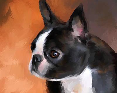 Boston Painting - Perky Boston Terrier by Jai Johnson