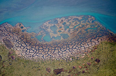 Permafrost Polygons On The Coast Art Print