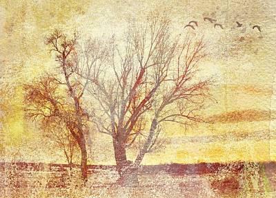 Pathway Digital Art - Perpetual Sky by Brett Pfister