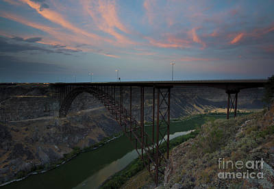 Reptiles Royalty-Free and Rights-Managed Images - PErrine Bridge Sunset by Mike  Dawson