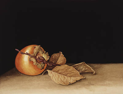 Persimmon Painting - Persimmon by Jenny Barron