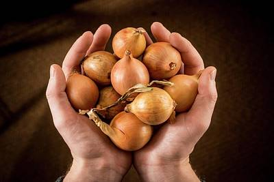 Person Holding Brown Onions Art Print by Aberration Films Ltd
