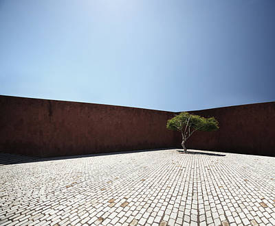Spain Photograph - Perspective View On Square With Tree by Stanislaw Pytel