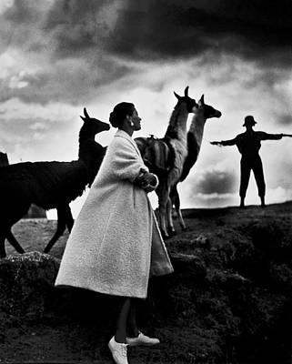 Llama Photograph - Peru Fashion Model, 1952 by Granger