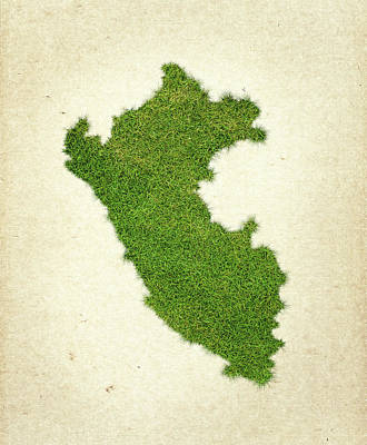 Peru Grass Map Art Print by Aged Pixel