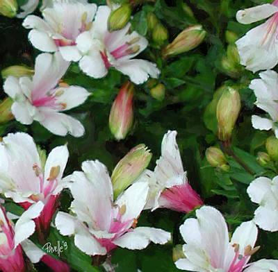 Digital Art - Peruvian Lilies by Jim Pavelle