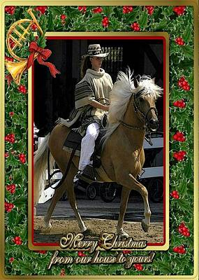 Peruvian Horse Painting - Peruvian Paso Horse Blank Christmas Card by Olde Time  Mercantile