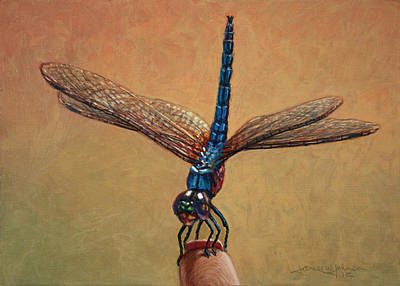 Dragonfly Painting - Pet Dragonfly by James W Johnson
