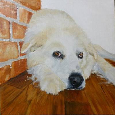 Pigatopia Painting - Pet Portrait Great Pyrenees Original Oil Painting On Canvas 10 X 10 Inch by Shannon Ivins