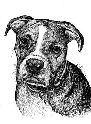 Pet Portraits Boxer Art Print by Heidi Creed