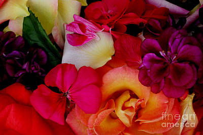 Art Print featuring the photograph Petal River by Jeanette French