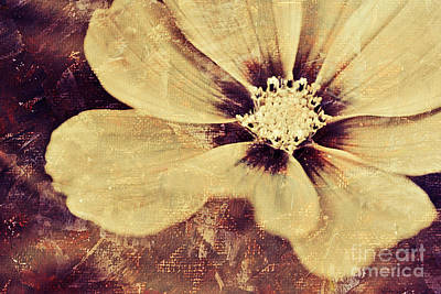 Petal Mixed Media - Petaline - T37d03a3 by Variance Collections