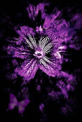 Petals From The Purple Art Print