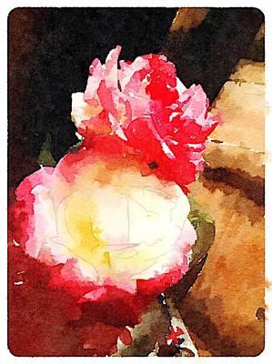 Digital Art - Petals by Shannon Grissom