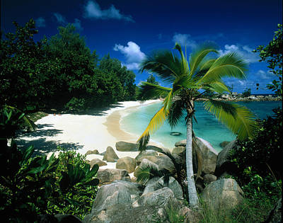 Petite Anse Praslin Seychelles Art Print by Panoramic Images