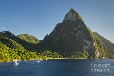 Photograph - Petite Piton - St Lucia by Brian Jannsen