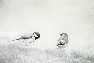 Searching Mixed Media - Petrels by Heike Hultsch