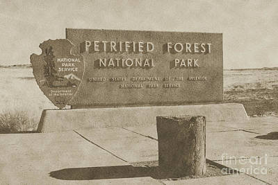 Digital Art - Petrified Forest National Park Entrance Sign Vintage by Shawn O'Brien