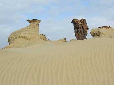 Petrified Sand Print by Peter-hugo Mcclure