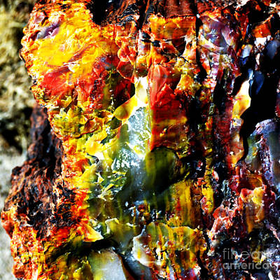 Photograph - Petrified Wood Macro At Petrified Forest National Park Square Vivid Color by Shawn O'Brien