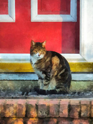 Photograph - Pets - Tabby Cat By Red Door by Susan Savad