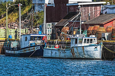 Photograph - Petty Harbour by Perla Copernik