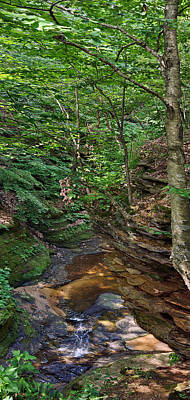 Photograph - Pewitt's Gorge  by Theo OConnor