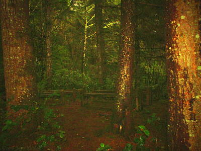 Photograph - Pews In The Forest by Joyce Dickens